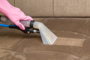 Roy S Carpet Cleaning Provides Top Upholstery Services In The Greater Boston Ma Area Our Team Of Experts Has Experience